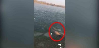 Buz kaplı gölün altında yüzen adam dehşeti yaşadı!