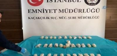 İstanbul'da rekor seviyede kobra zehri ele geçirildi