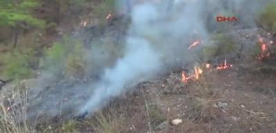 Kumluca'da 3 noktada orman yangını