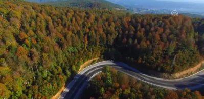 Longoz Ormanları'nın görüntüleri mest ediyor