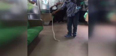 Trenden çıkan yılanı böyle öldürdü!