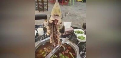 Yemek masasında canlanan balık!
