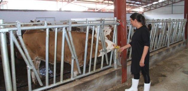 Çankırı haberleri Ev hanımıydı destekle çiftlik kurdu - 19 Kasım 2015