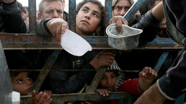 Musul'da 335 bin kişi yerlerinden oldu!