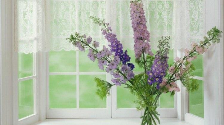 Canlı çiçeklerin ömrü nasıl uzatılır?