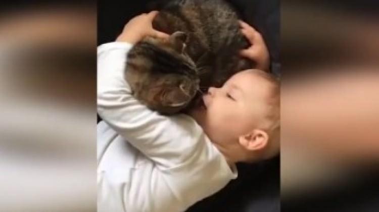 Kediyle bebeğin koyu sohbeti gülümsetti