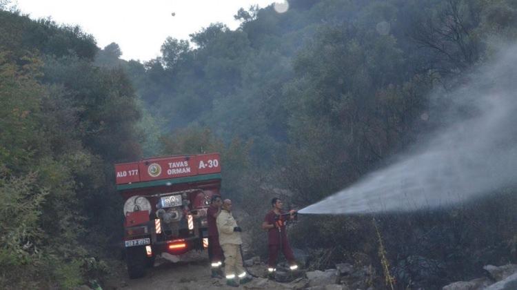 Denizli'de feci yangın! 5 hektarlık alan kül oldu
