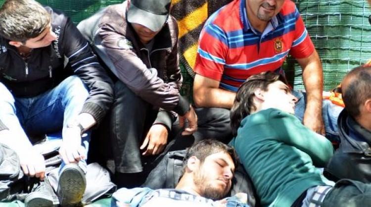 Milas'ta 91 kaçak yakalandı