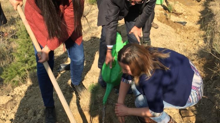 Eyüp Sabri Tuncer anısına hatıra ormanı