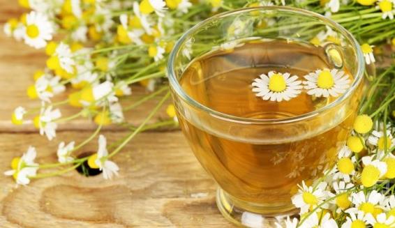 boğaz ağrısına papatya çayı