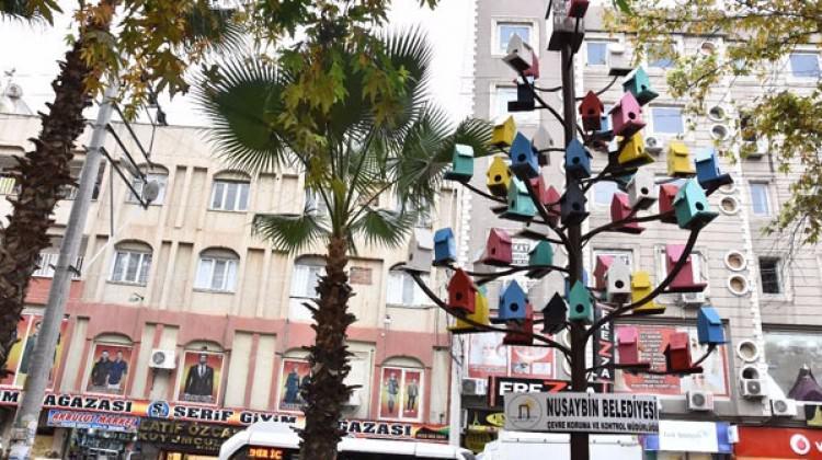 Parktaki ağaca kuşlar için rengarenk yuvalar