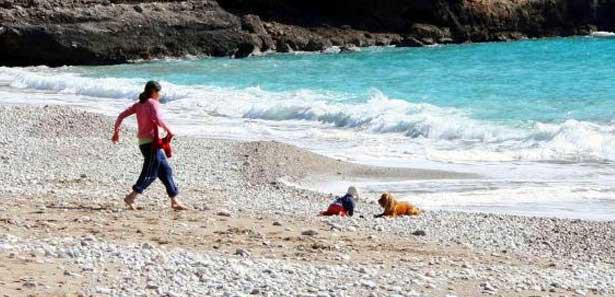 Emekleyerek denize giden bebeği köpek kurtardı
