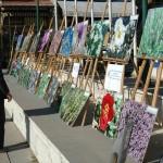 Mihalıççık'ta tıbbi bitkilerin tanıtım sergisi