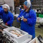 Her bir çalışanına 22 bin Euro ikramiye dağıtacak