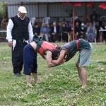 Eriklikuyu Mahallesi 17.Kültür, Spor ve Aba Güreşleri Festivali