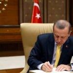 Cumhurbaşkanı Erdoğan'dan Cemil Meriç mesajı