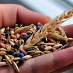 Bitkisel üretim destek ödemelerinde süre uzatıldı