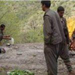Kandil'den Çanakkale'ye gelen PKK'lı yakalandı!