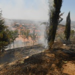 Emet'te ot yangını