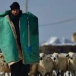 Çobanlar da otomobile ÖTV ödemesin teklifi