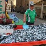 Balıkçılara erken hamsi avı uyarısı