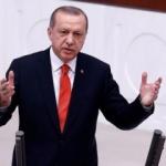 Rus uzman: 'Erdoğan risk aldı ve kazandı'