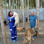 Aile hekimi, hayatını sokak hayvanlarına adadı