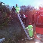 Zonguldak'ta ormanda kaybolan gençler kurtarıldı