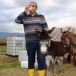 Eşek sütüyle iyileşti şimdi ise çiftlik kurdu