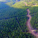 Kütahya'da orman yangınlarıyla mücadele hazırlıkları