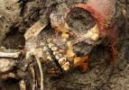 Adana'da yol kenarında kafatası bulundu