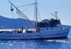 Balıkçı tekneleri azaltılacak