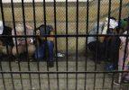 Eşcinsel düğününe katılanlara hapis