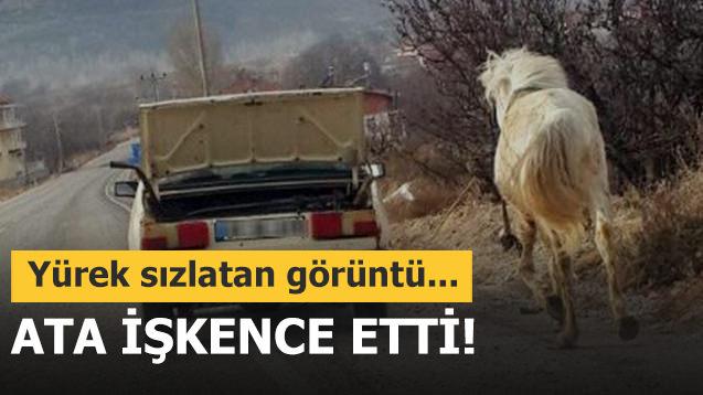 Vicdansız sürücü kilometrelerce ata işkence etti!