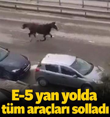 E-5 yanyolda koşan at arabaları solladı